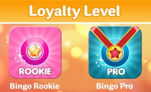 Do bingo sites offer promotions to loyal gamers?